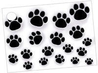 Paw Prints Card