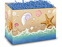 Seashells Box